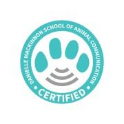 DMSAC Large certification seal