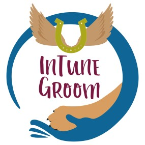 Final intune_groom_blue