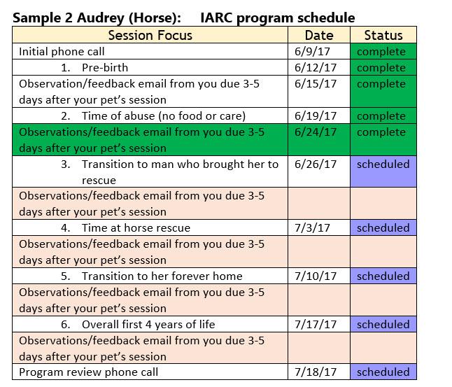Sample program 2 Horse (Audrey)